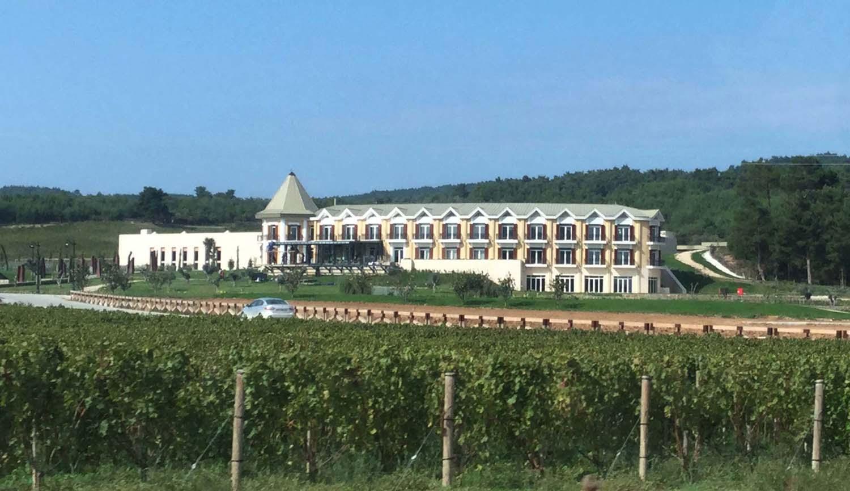 Hotel Caeli ile ilgili görsel sonucu