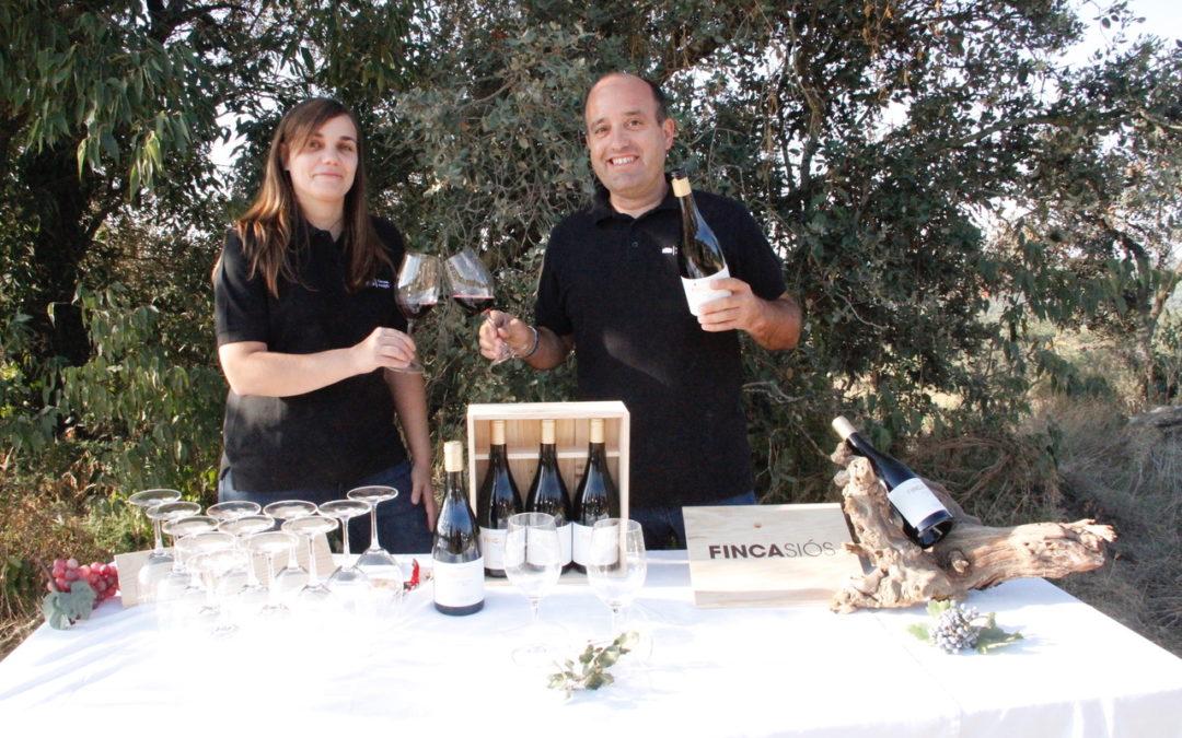 Costers del Sió inicia la vinificació del vi de trull Finca Siós 2018