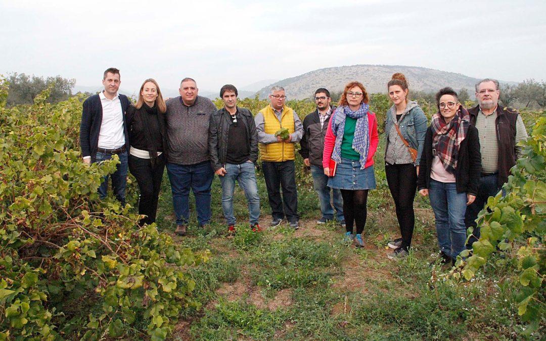 Visites als cellers del I Press Trip de la Festa del Vi de Lleida