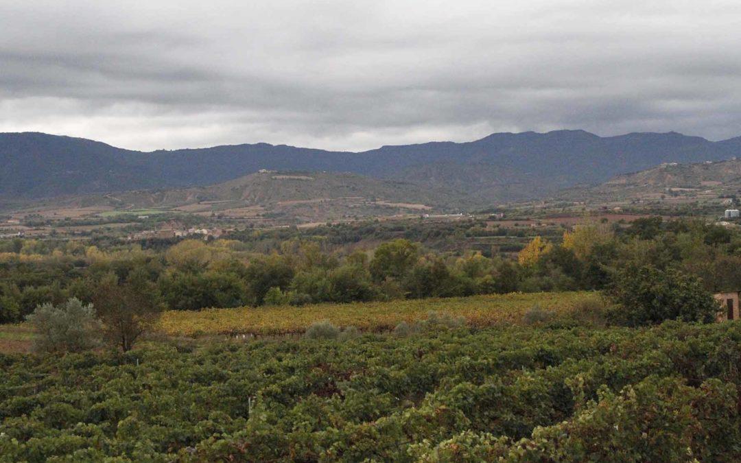 Descubriendo los 7 Vinos, 7 Paisajes de Lleida…