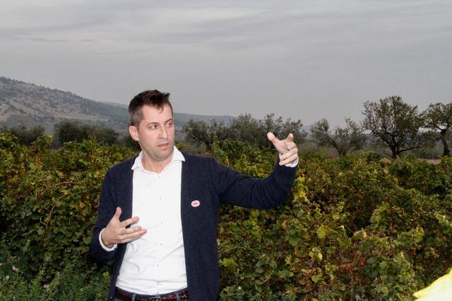 Lagravera cierra el 2018 como Mejor Proyecto Ecológico y Vino de Patrimonio