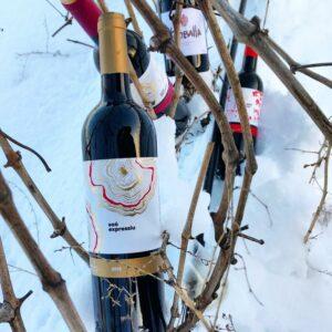 Gran Medalla d'Or pel Saó Expressiu de Mas Blanch i Jové al Catavinum World Wine Awards