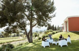 Vi, cultura i natura a Jean Leon, per gaudir de l'estiu